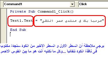 الدرس السادس ...التعامل مع أدوات الفجوال بيسك 6 ...أداة Textbox & lable  590771064