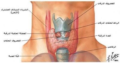 الاشعاع النووي أحد أبرز علاجات الغدة الدرقية  934490698