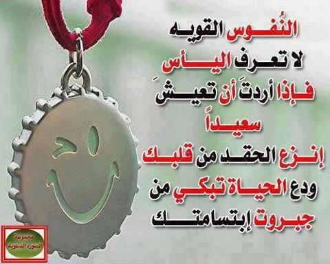 عود علي بدء .. حكمة اليوم الاحد  10 - 11 - 2013 986799876
