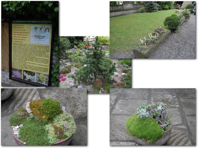 Rock' Gardener Club Prague 1711873