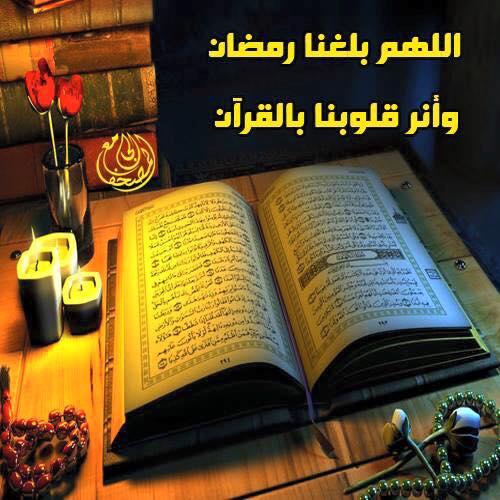 مسابقة محبة القرآن الكريم (1436هـ) 169406211