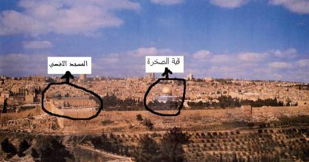 الفرق بين المسجد الأقصى وقبة الصخرة 811512780