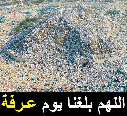 أناشيد جهادية مهداة للجميع - صفحة 2 397811583