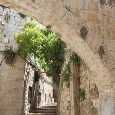 القدس كما لم تراها سابقا 487081045