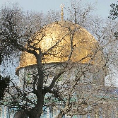 القدس كما لم تراها سابقا 336808698