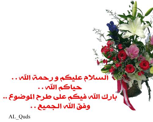 القدس الشريف 404875050