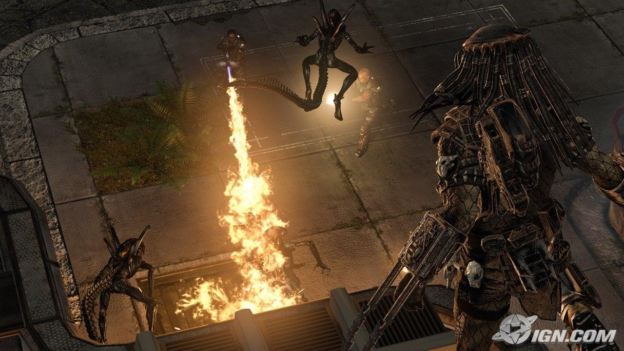 AVP review (written) Aliens-vs-predator-20091026061304518