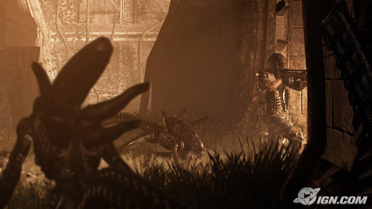 AVP review (written) Aliens-vs-predator-20091026061308440