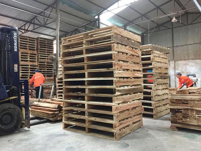 Hàng nhập giá rẻ như cho pallet gỗ siêu rẻ bền đẹp Kho-pallet-go-gia-re-ben