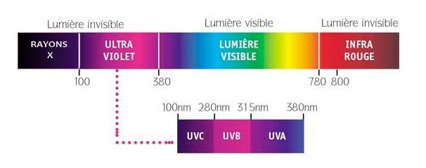 Purification UV de fortune 110303105244693584