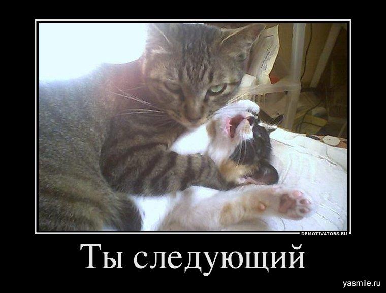 подборка от стасевича - Страница 2 1321969716_470678_tyi-sleduyuschij