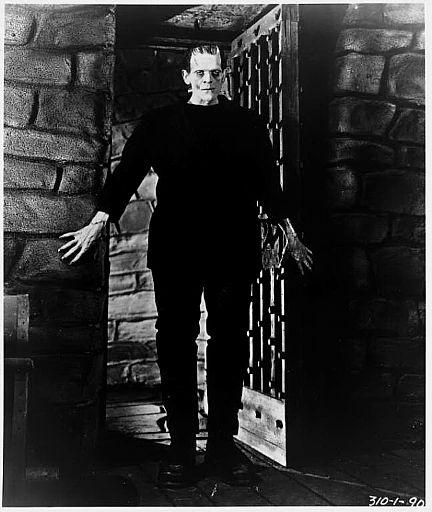 5º Amante Desatado - J.R Ward - Página 37 Frankenstein2