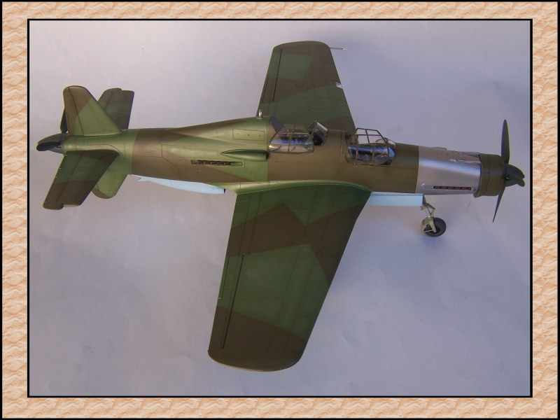 [Tamiya 1/48] Dornier Do335A-12c'est fini! Mon35