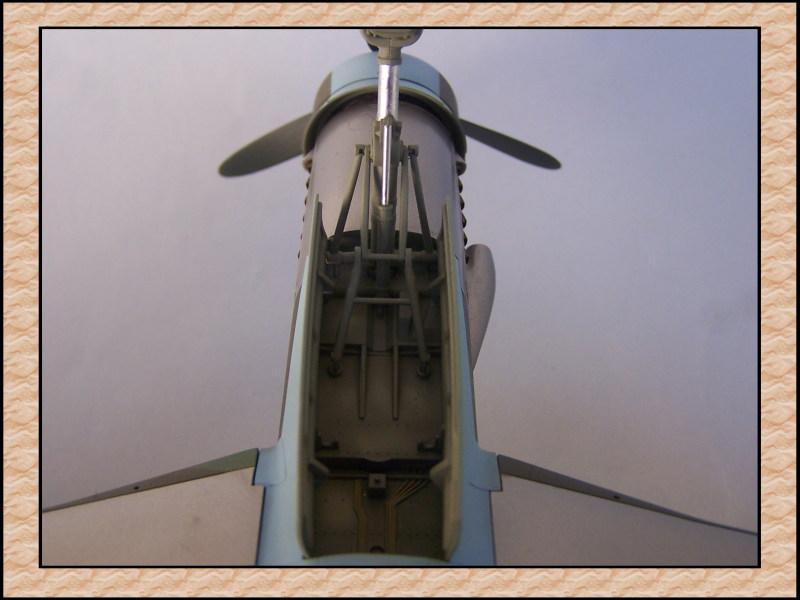 [Tamiya 1/48] Dornier Do335A-12c'est fini! Mon42