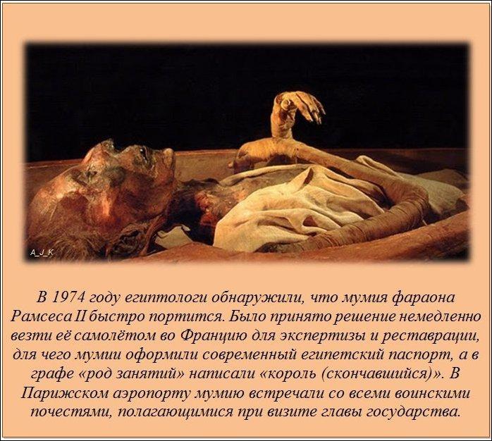 Знаете ли вы, что? – Интересные факты Interesnye_fakty_20_foto_7