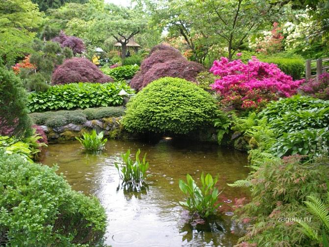 Оформление сада 1344806738_22