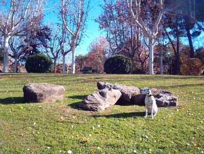 El Parque [Rol] 20051209152635-zara-parque-grande