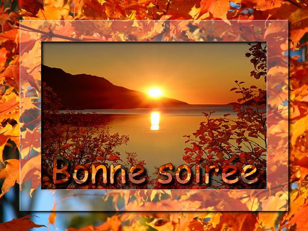 bonne nuit !!! - Page 51 2625b2aa