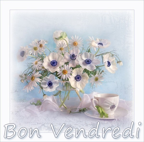 Bonjour !!! - Page 2 51f41139