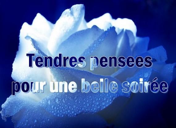 bonne nuit !!! - Page 52 A53d11c8