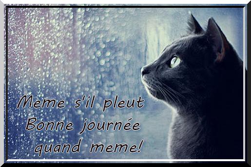 Bonjour !!! - Page 3 B70ea356