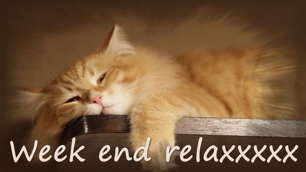 bonne nuit !!! - Page 51 B9d24931