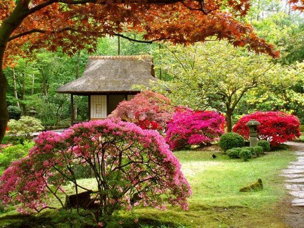 Двор за домом Japan