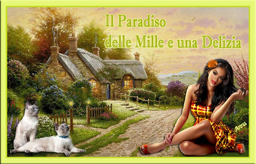 Il paradiso delle mille e una delizia