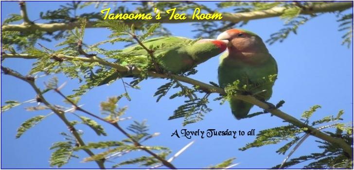 Tanooma's Tea Room