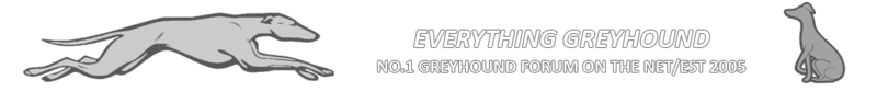 Everything Greyhound