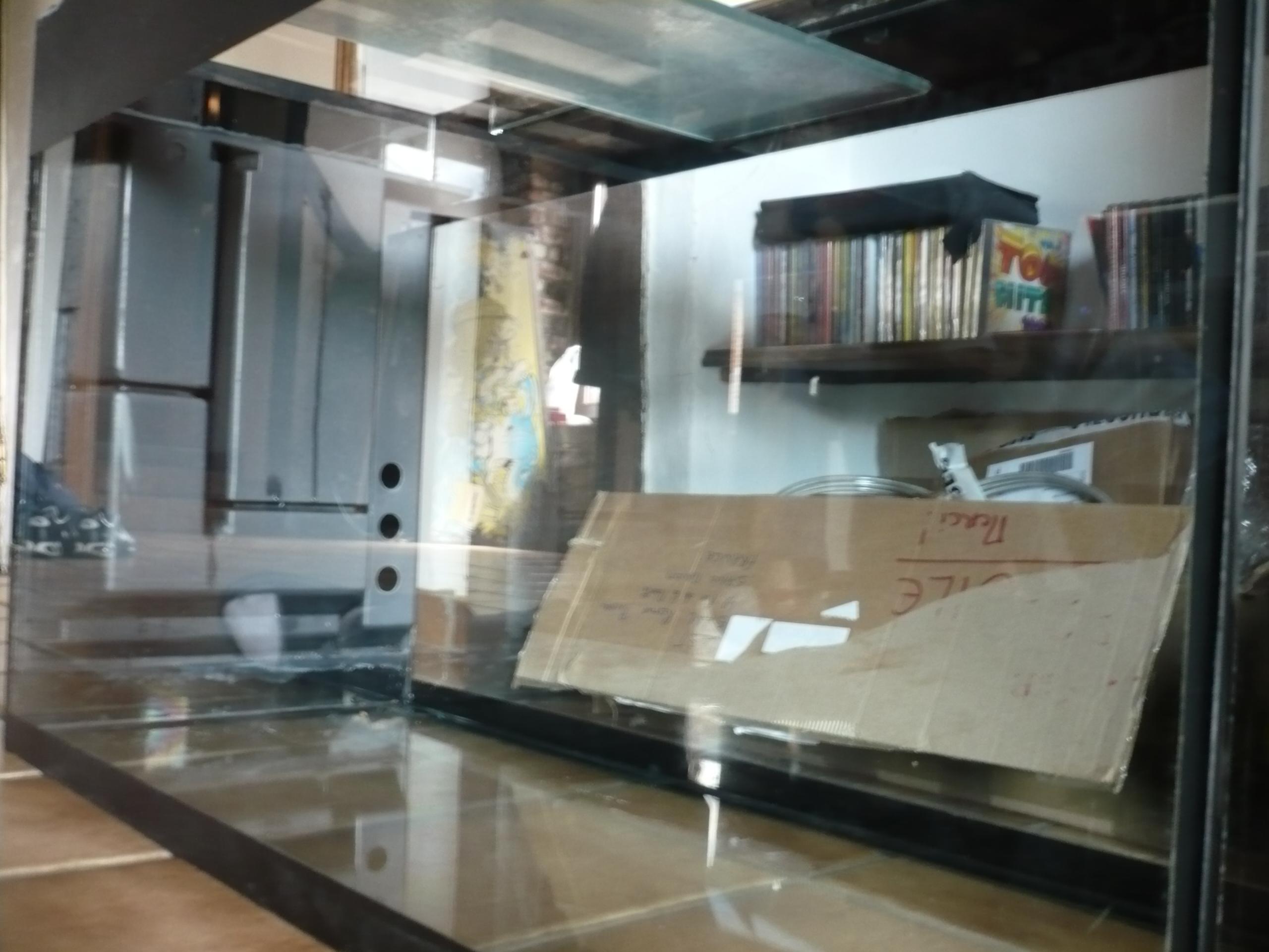 Mon premier Aquarium, réfection totale. 1335870289-P1070155