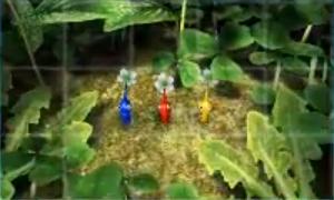 [3DS] Code Amis / Echange, Partage et Infos 1349624916-6-pikmin