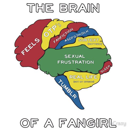 Image Board - Page 3 1366484514-the-brain-of-a-fangirl