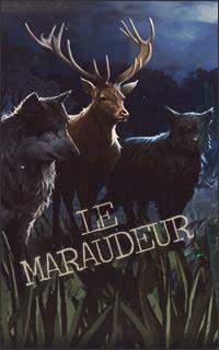 Le Maraudeur