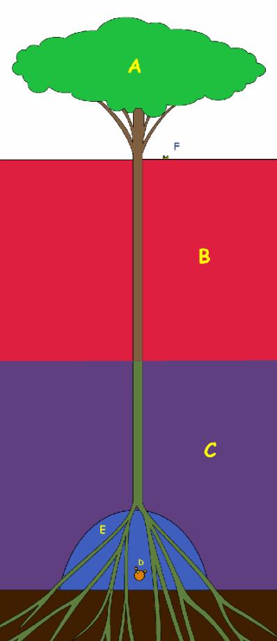 theorie sur One piece et La fin du manga 1395003557-sunny-zps8e02e7d42