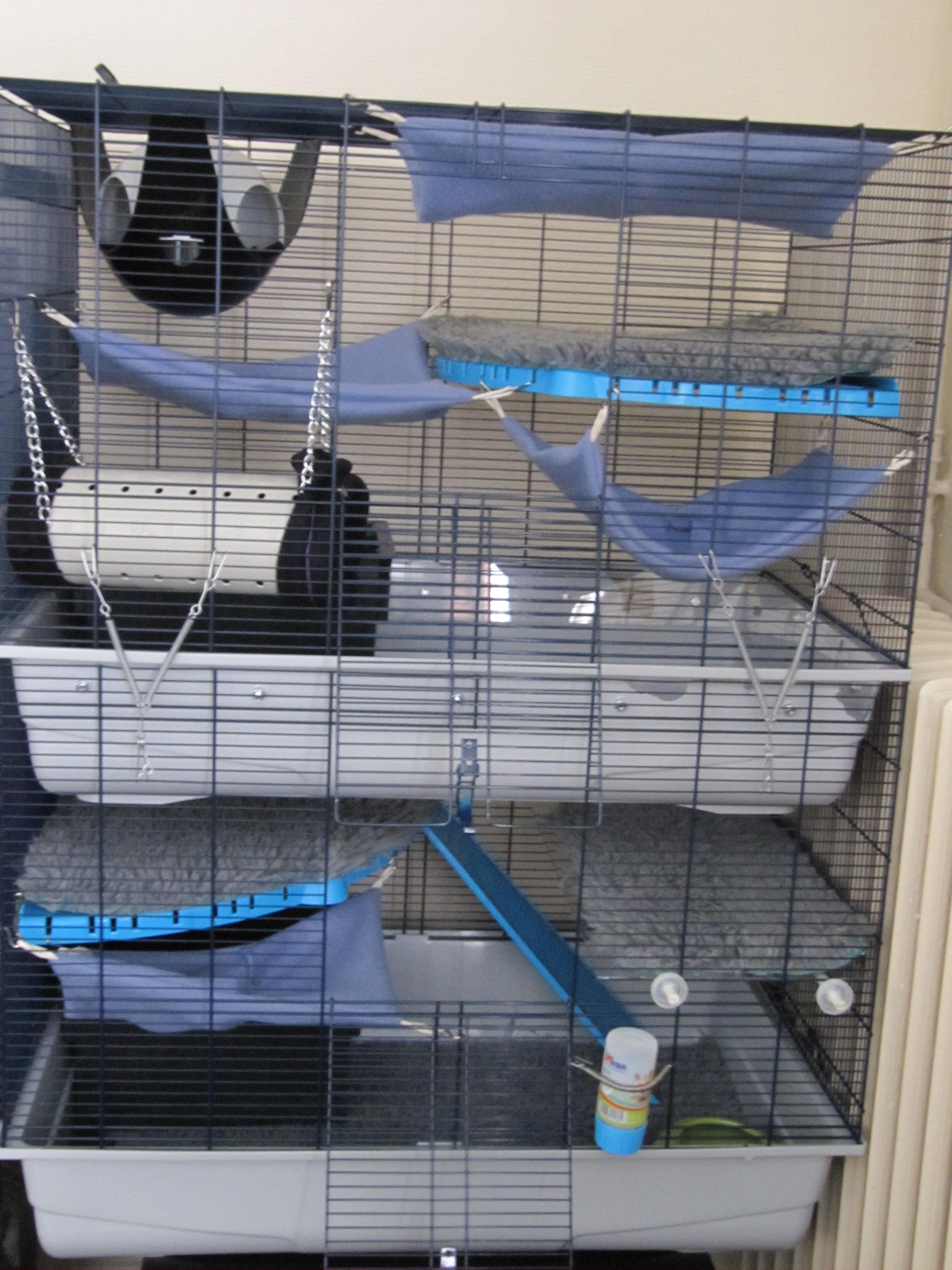 Photos de vos cages 1399463702-img-9962