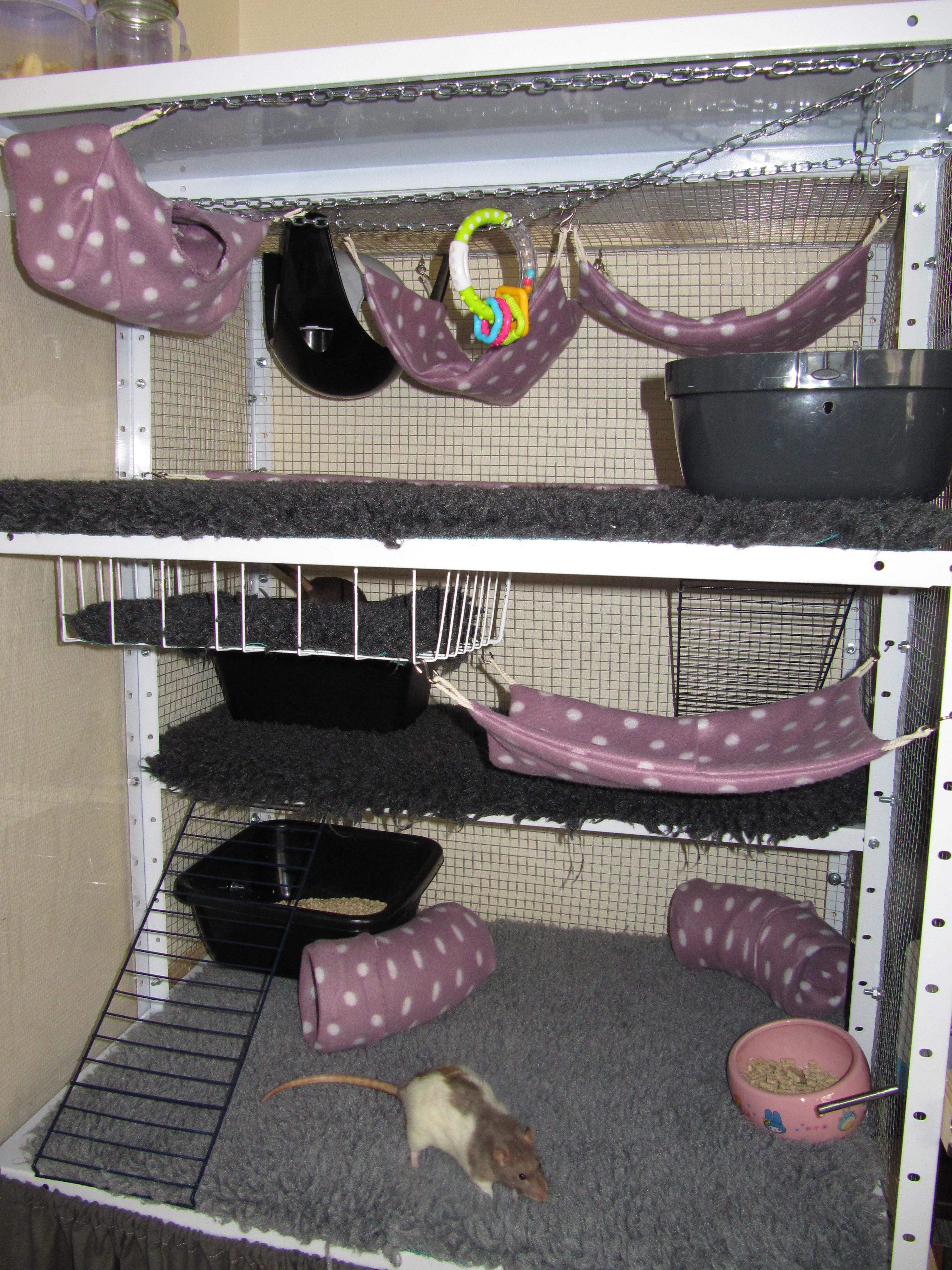 Photos de vos cages 1399463707-img-9960