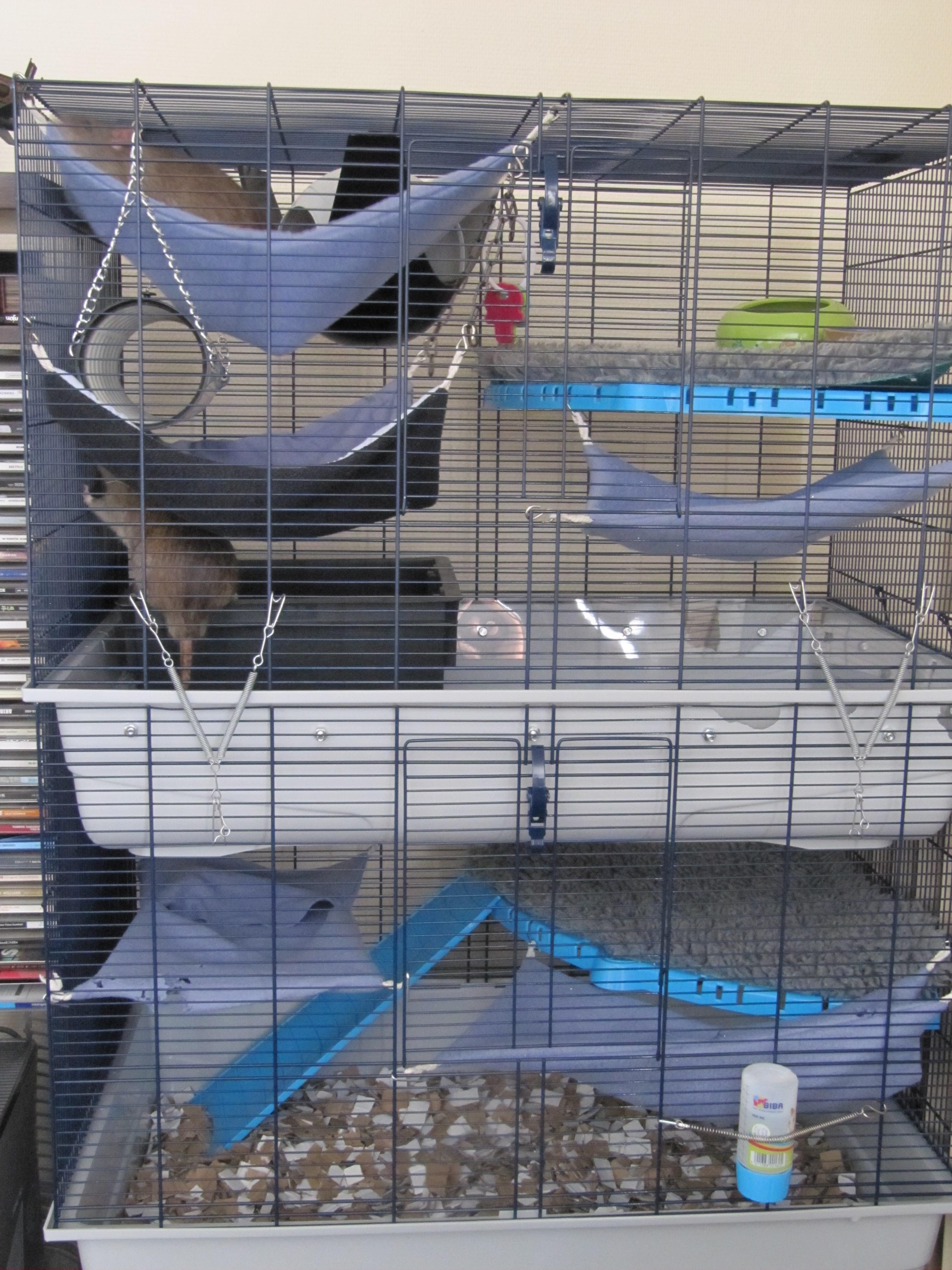Photos de vos cages 1404062123-img-0737