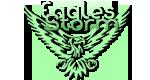 Eagles Storm