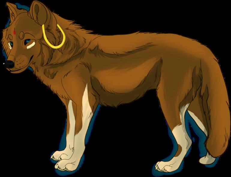 Asita - Moine 1405078563-asita-wolflove1998