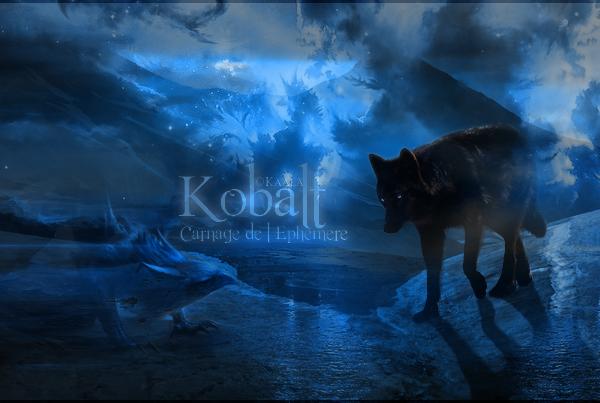 Crow 1469457211-kobalt-signature