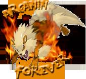 Arcanin Forever