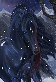 Mustang sauvage