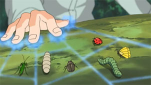 Hiden : Insecte【CLAN ABURAME】 1491582843-insect-gathering