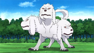 Clan Inuzuka 1491650089-three-headed-wolf