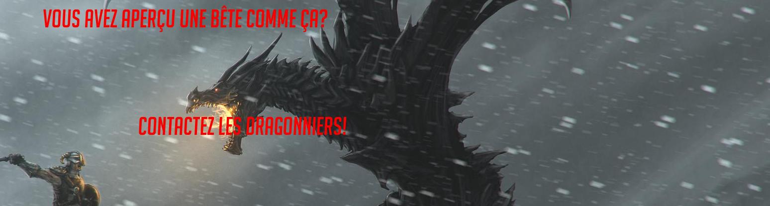 Le Phénix Enchaîné #11 1501173988-dragonniers
