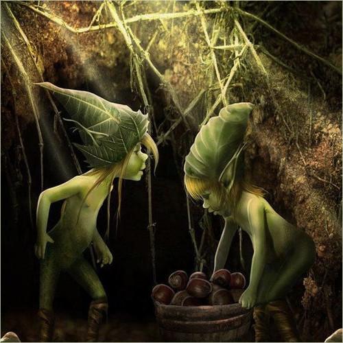 Description des Lieux et monstres présents 1513686682-farfadetb