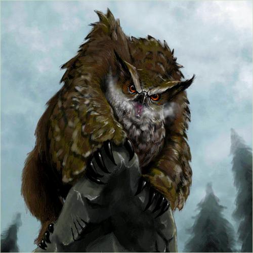 Description des Lieux et monstres présents 1513690358-hiboursb