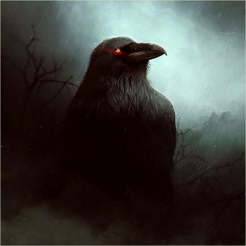 Descriptions des lieux et monstres présents 1513710003-corbeaub