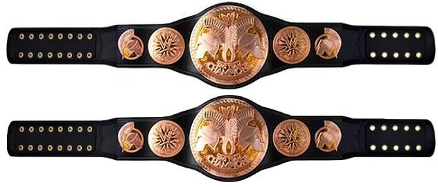 STATISTIQUES DES LUTTEURS DE LA WWFF 1516627678-wwff-tag-team-championship-belt